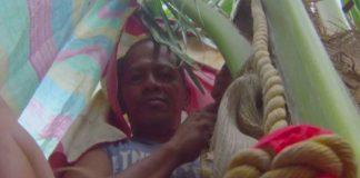 Gilbert Sanchez, 47 anos, se recusava a descer do coqueiro