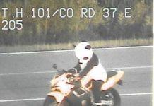 Motociclista que dirigia fantasiado de panda é parado pela polícia nos EUA (Foto: Minesotta State Patrol/Twitter)